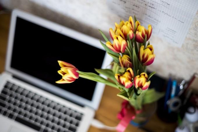 Kwiaty na biurku w pracy / źródło: www.pixabay.com