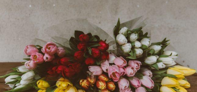 Bukiet imieninowy z tulipanów
