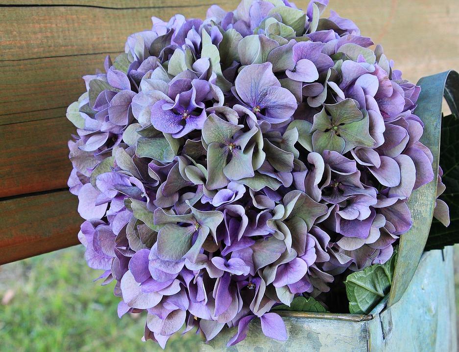 Kwiaty na ślub w lipcu